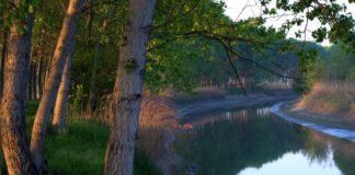 fiume Secchia argini