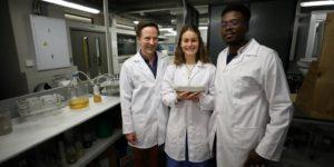 I primi mattoni fatti di urina: ricercatori sudafricani rivoluzionano la bio-edilizia