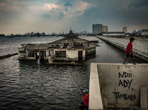 Jakarta sprofonda, l'Indonesia trasferirà la capitale sull'isola del Borneo
