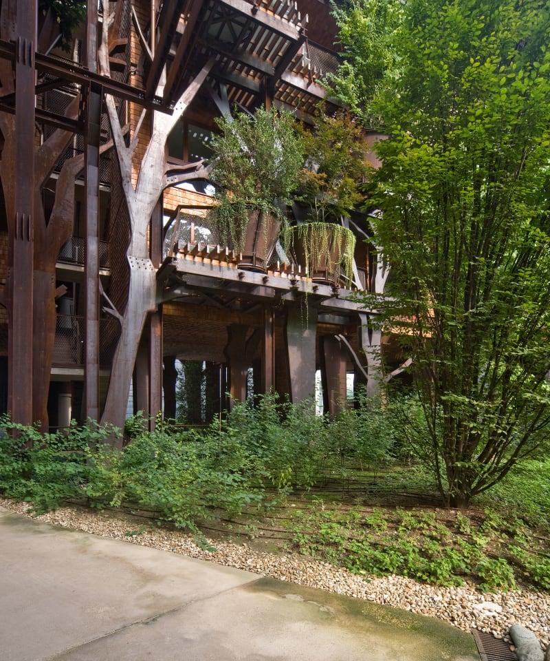 Condominio 25 Verde, il palazzo foresta di Torino