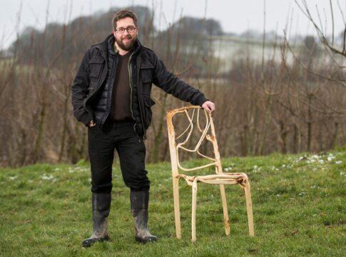 Alberi che crescono a forma di sedie