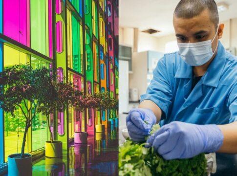 AuREUS, finestre che convertono i raggi UV in elettricità