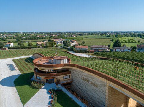 Il tetto vigneto della Cantina Giusti Wine