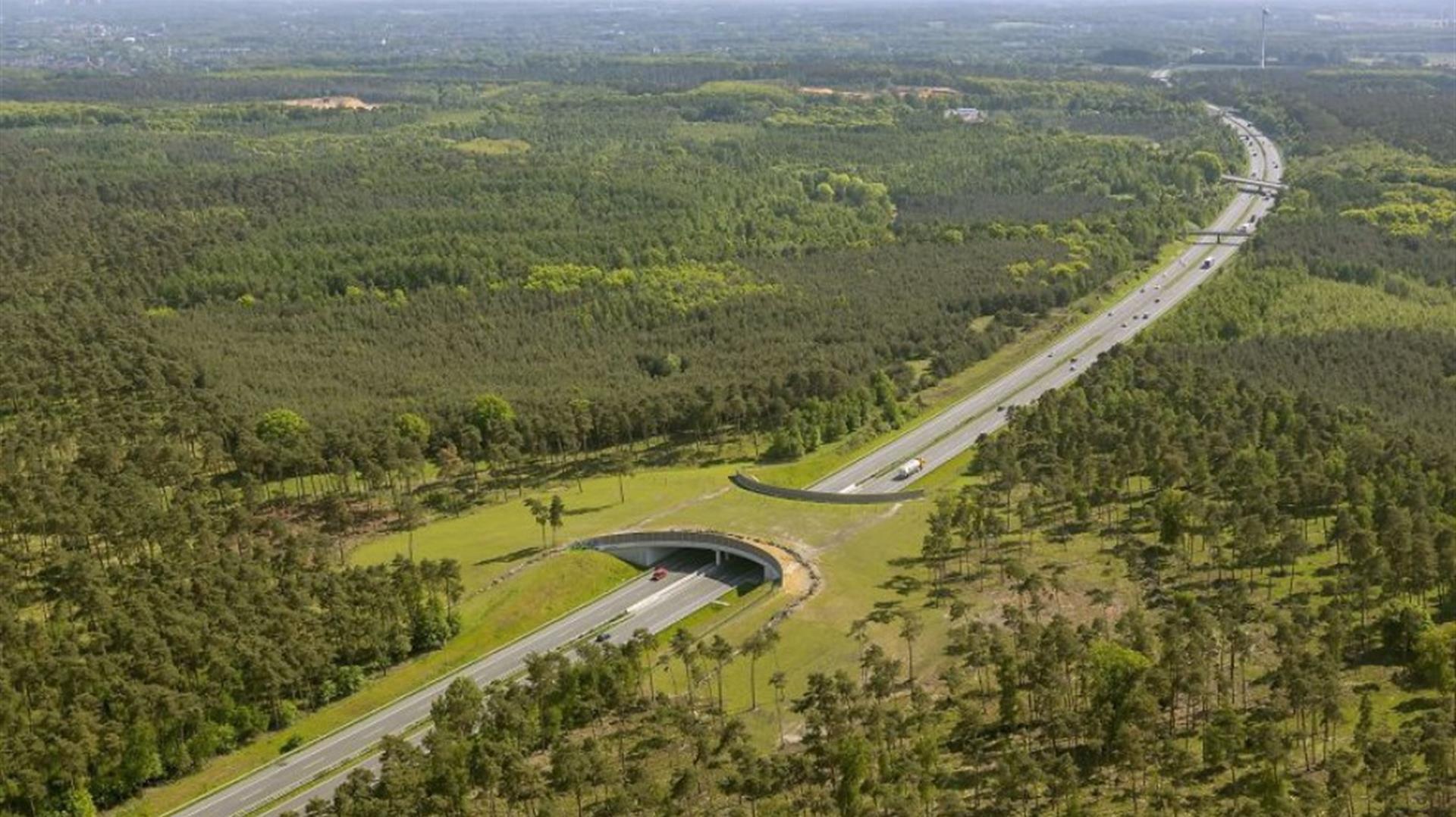 Infrastrutture sostenibili, un nuovo modo di concepire le strade